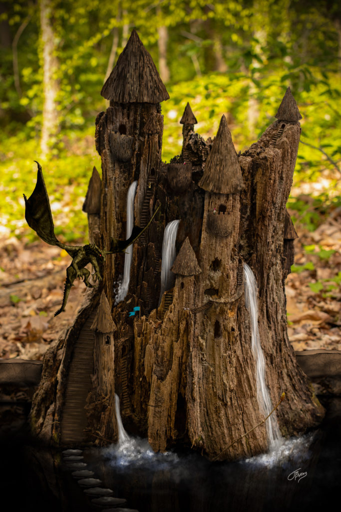 From an old stump to a fantastical place of fantasy.